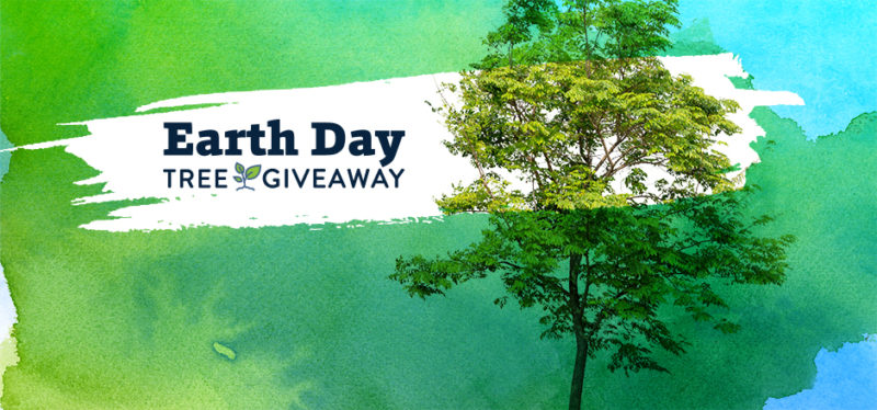 Earth Day Tree Giveaway