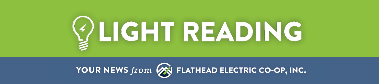 Light Reading Your News from Flathead Electric Co-op