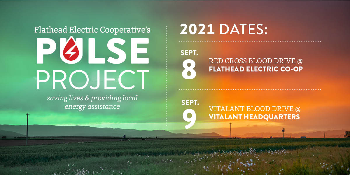 Pulse Project 2021