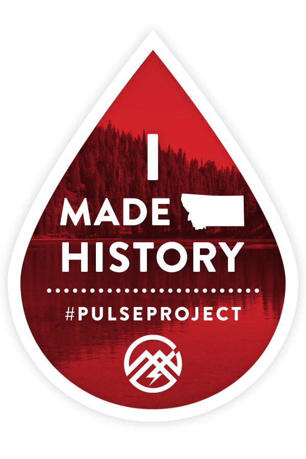 Pulse Project Sticker
